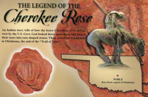 Oklahoma Legend - The Cherokee Rose:) Thanks, Maria!:)