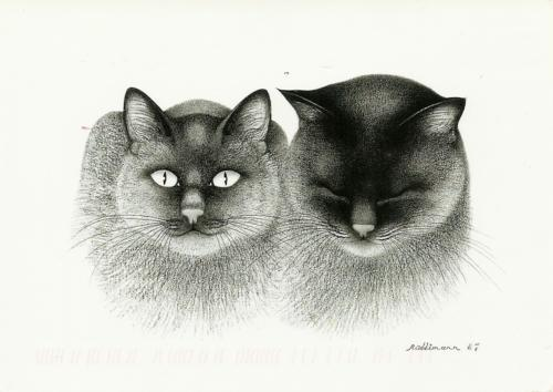 """Wir gehören zusammen"" (We belong together) or Katzenstudien (Cats study), 1997, by Swiss artist Hans Rüttimann."