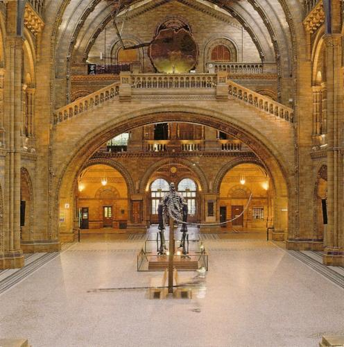 Hintze Hall in the Natural History Museum in London.