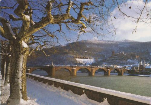 Nice view of the beautiful Heidelberg in the south of Germany~^^
