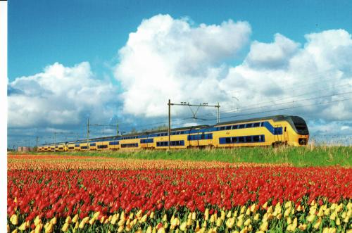 """NS train--Verlengd InterRegio Materieel